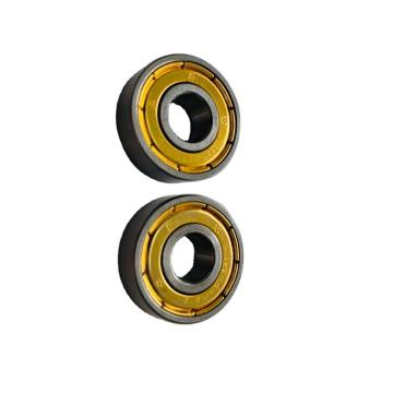 Auto Bearing Cylindrical Roller Bearingnu/Nj/N/Nup/207 Chrome Steel